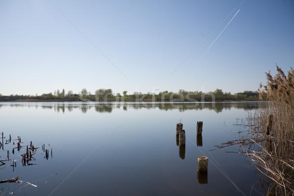 красивой озеро небе весны древесины лес Сток-фото © inoj