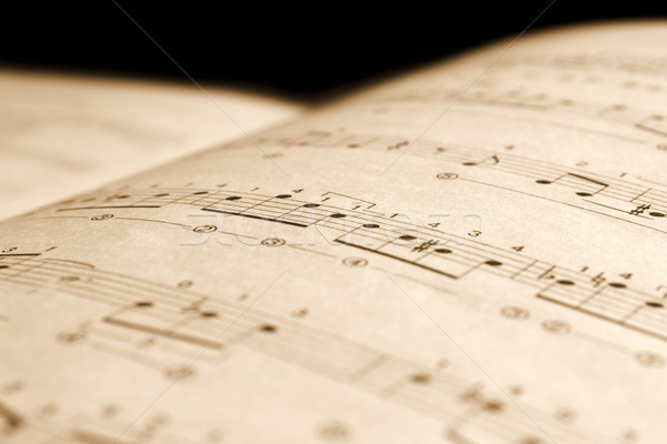 Old musical notes  Stock photo © inoj