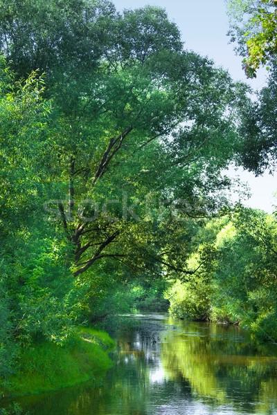 Erdő folyó égbolt tavasz fa természet Stock fotó © inoj