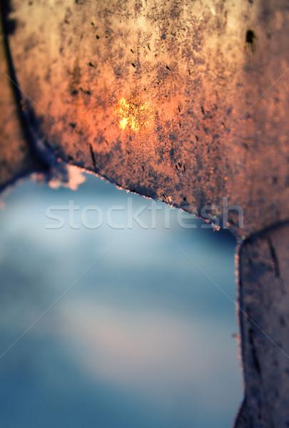 зима закат сломанной окна дерево солнце Сток-фото © inoj