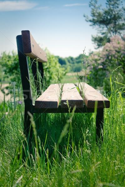 старые парка скамейке весны древесины природы Сток-фото © inoj
