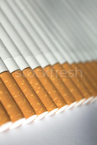 Cigarettes  Stock photo © inoj