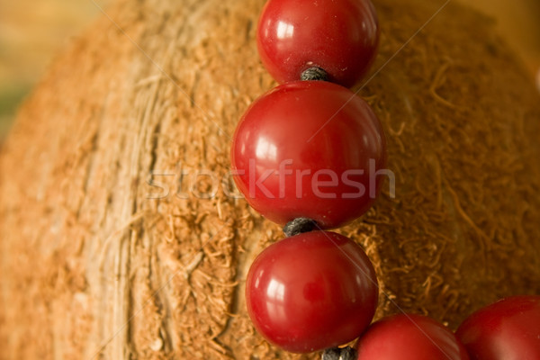 Hindistan cevizi kostüm takı meyve kırmızı Stok fotoğraf © inoj