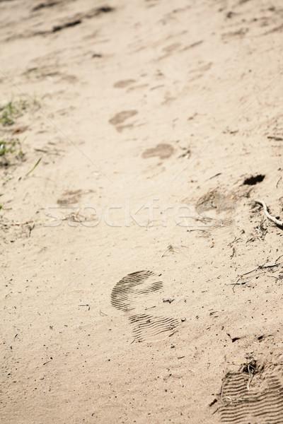 следов песок путешествия ногу поиск желтый Сток-фото © inoj