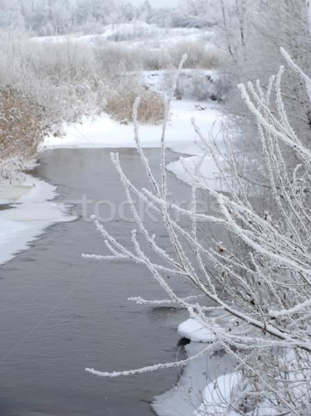 Tél folyó víz erdő természet hó Stock fotó © inoj