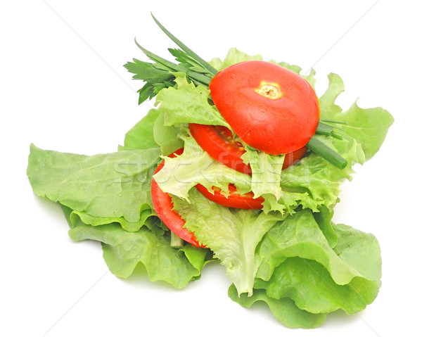 tomato vegetable and lettuce salad isolated on white background Stock photo © inxti