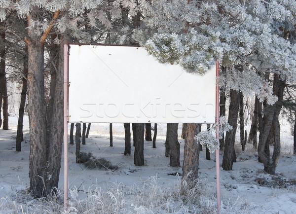 üres tábla erdő keret jég felirat űr Stock fotó © inxti