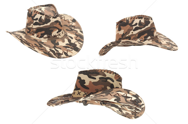 collection hats isolated on the white background  Stock photo © inxti