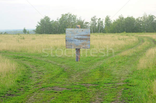 Showing a path splitting into two going with a blank signpost.  Stock photo © inxti