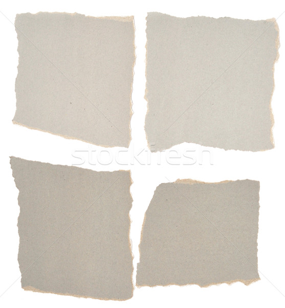collection of grey ripped pieces of paper  Stock photo © inxti