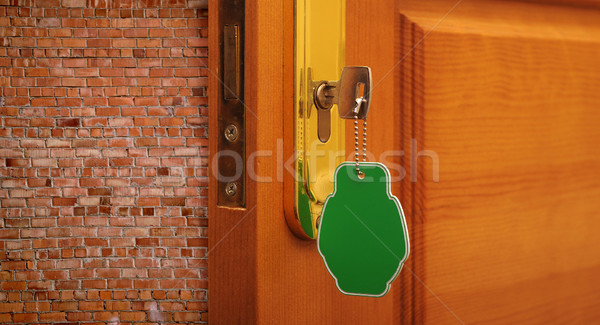 Doorway blocked by a brick walls  Stock photo © inxti