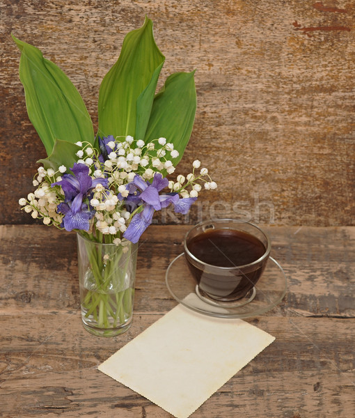 Still-life bouquet of lily of the valley  with blue irises Stock photo © inxti