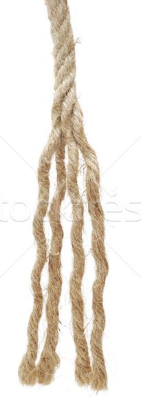 Сток-фото: веревку · изолированный · белый · текстуры · фон · подчеркнуть
