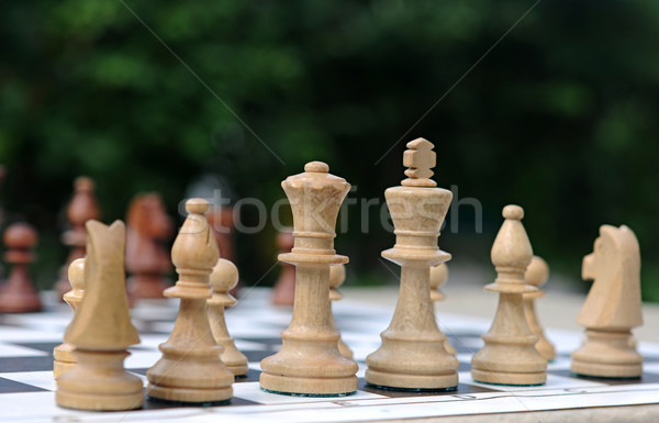 Blanco piezas de ajedrez bordo hierba deporte naturaleza Foto stock © inxti