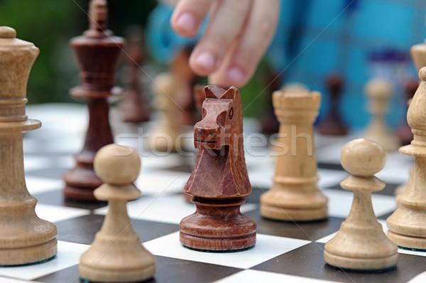 Nero cavaliere pezzo degli scacchi sport guerra squadra Foto d'archivio © inxti