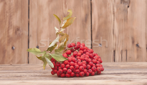 ashberry with leaves on old wooden table  Stock photo © inxti