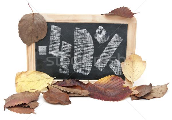 Sonbahar indirim kırk yüzde yazılı tahta Stok fotoğraf © inxti