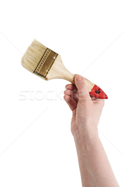 human hand is holding paintbrush isolated on white Stock photo © inxti