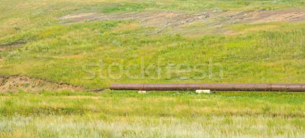 Water pipe in a green field full of high grass Stock photo © inxti