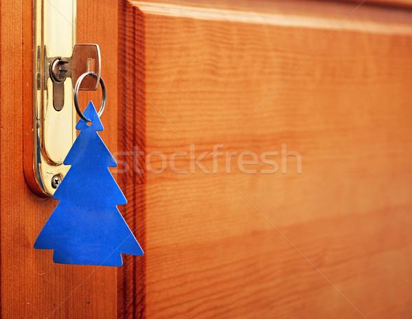 キー 前方後円墳 タグ フォーム クリスマスツリー 家 ストックフォト © inxti
