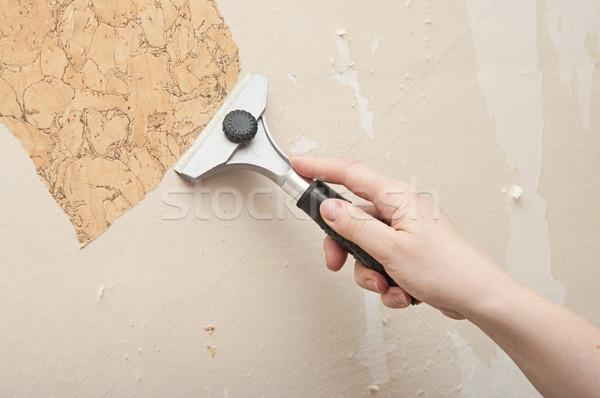 Strony tapety ściany papieru wnętrza nóż Zdjęcia stock © inxti