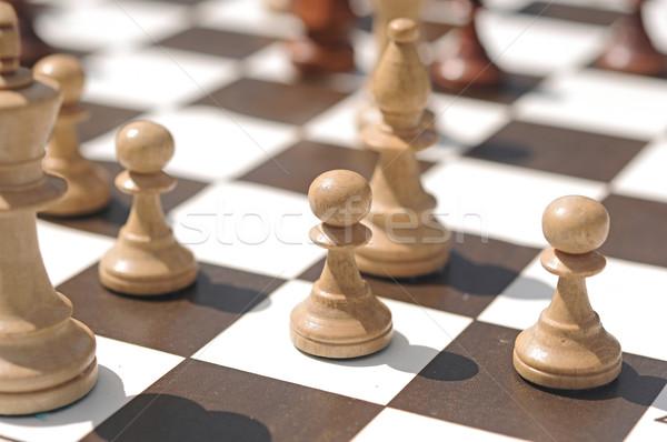 Piezas de ajedrez mesa parque hierba naturaleza campo Foto stock © inxti