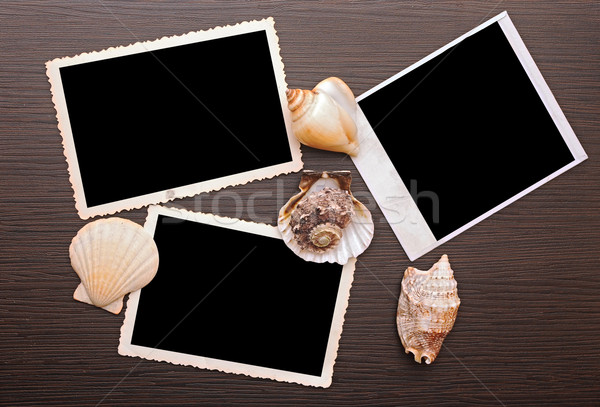 Photo frame with sea shells on wood background  Stock photo © inxti