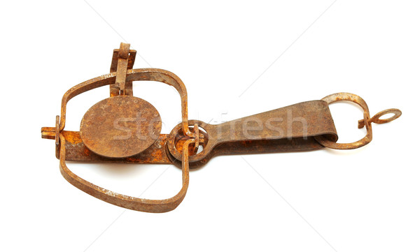 Caccia trappola isolato bianco metal animali Foto d'archivio © inxti