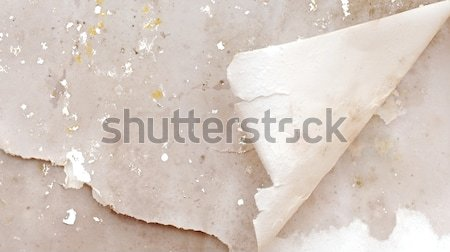 Old paper grunge with corner curl  Stock photo © inxti