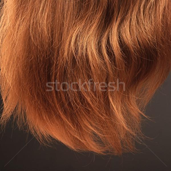 Lang steil haar zwarte vrouw licht haren Stockfoto © inxti