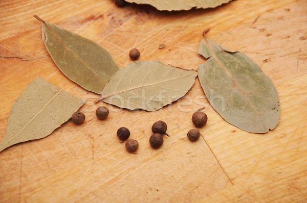 Babérlevél fa fa étel természet háttér Stock fotó © inxti
