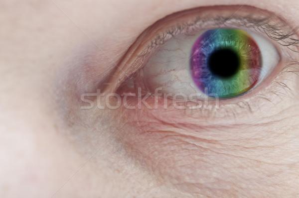 Beautiful colorful eye close up  Stock photo © inxti