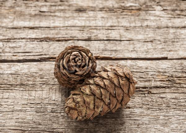 соснового древесины орехи лес природы таблице Сток-фото © inxti