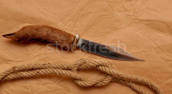 Hunting knife and rope Stock photo © inxti
