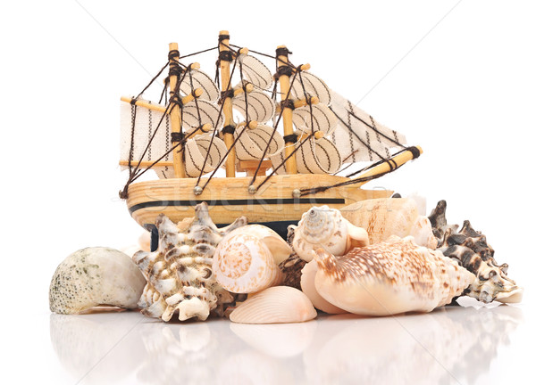 Sailing vessel and sea shells on white background Stock photo © inxti
