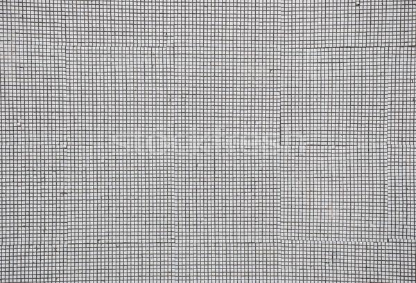 mosaic tiles Stock photo © inxti