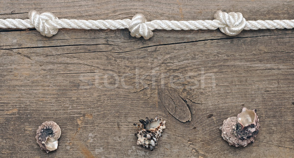rope and shells on weathered wood background Stock photo © inxti