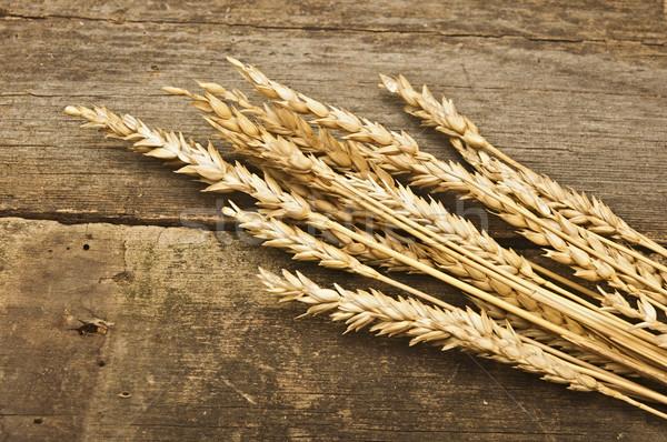 秋 小麦 古い木材 テクスチャ 抽象的な レトロな ストックフォト © inxti