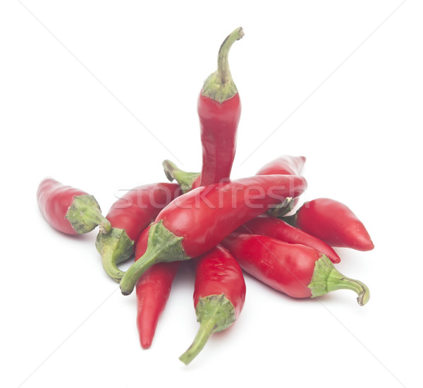 Chile aislado blanco cocina planta comer Foto stock © inxti
