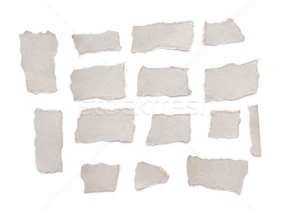 коллекция серый рваной бумаги набор белый служба Сток-фото © inxti