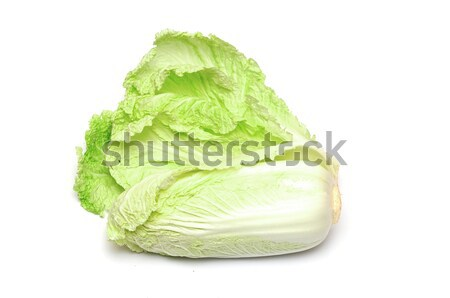Chinese cabbage on white background  Stock photo © inxti