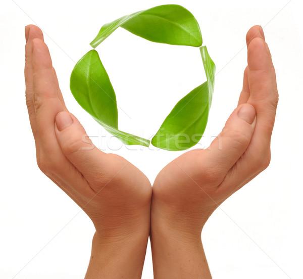 Foto stock: Reciclagem · símbolo · mãos · isolado · branco · verde