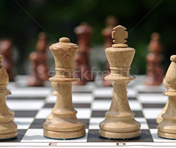 Photo stock: Blanche · pièces · d'échecs · bord · vert · noir · succès