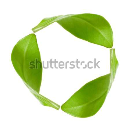 recycling symbol  Stock photo © inxti