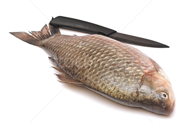 Crucian carp and knife isolated on white background Stock photo © inxti