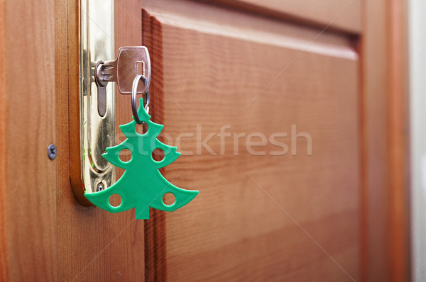 key in keyhole with blank tag in the form of a Christmas tree Stock photo © inxti