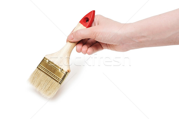 Hand with paintbrush isolated on white background  Stock photo © inxti