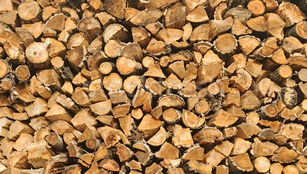 chopped firewood on a stack  Stock photo © inxti