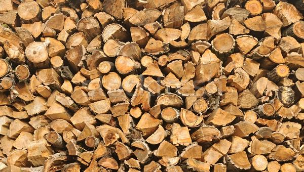 Aprított tűzifa boglya fa tél ősz Stock fotó © inxti