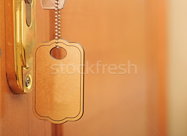 key in the keyhole, key blank  Stock photo © inxti